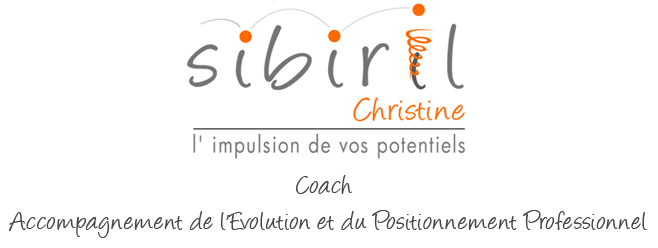 Christine sibiril coach professionnel